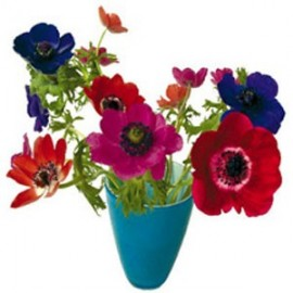 Flat Flowers Greetings  Anemone blauw