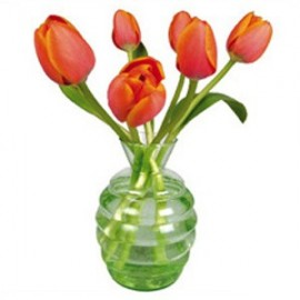 Flat Flowers Greetings Tulp oranje