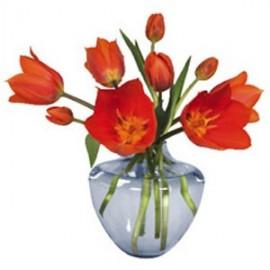 Raamstickers Tulp oranje in blauwe vaas