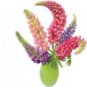 Flat Flowers Greetings Lupine