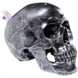 Spaarpot Skull Antiek Zilver