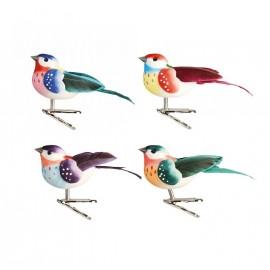 Set van 4 Gekleurde Vogels op Clip
