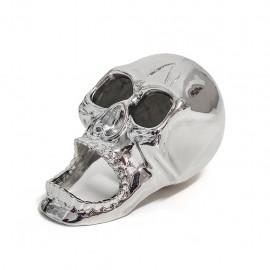 The Skull Flesopener