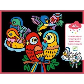 Djeco Knutselpakket Viltkleurplaten Babyvogels