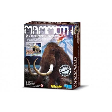 Skelet Bouwpakket Mammoth