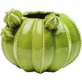 Vaas Cactus