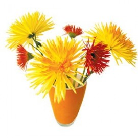 Flat Flowers Chrysant