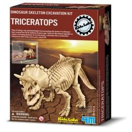 Skelet bouwpakket  Triceratops