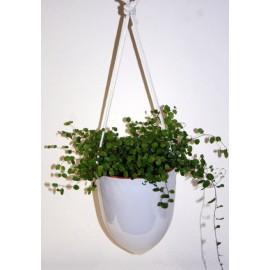 Hangpot Cone 1 Wit