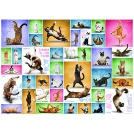 Puzzel Yoga Cats 1000st.
