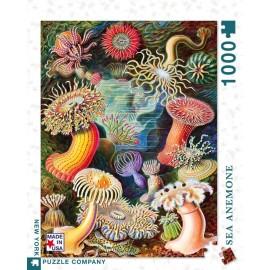 Puzzel Zeeanemonen 1000st