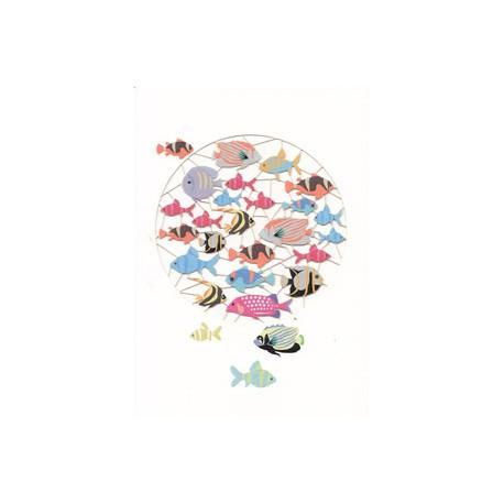 Colourfull Fish