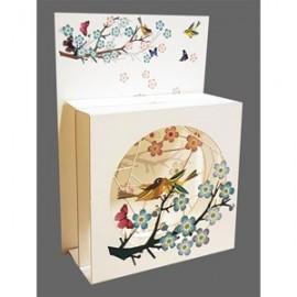 Magic Box Card Fresh Air