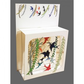 Magic Box Card Magic Spring