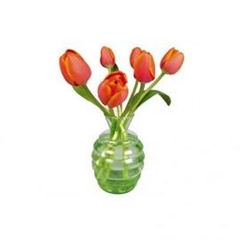 Flat Flowers Tulpen oranje