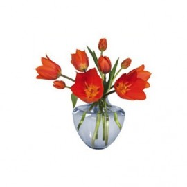 Flat Flowers Greetings  Open Tulp Oranje