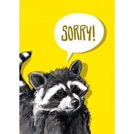 Ansichtkaart Sorry