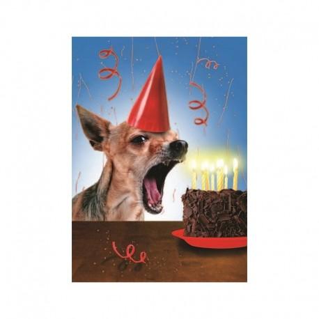 Fotokaart Barking at the Candles