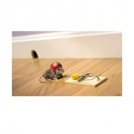 Fotokaart Mouse in Helmet