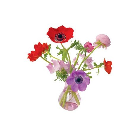 Raamstickers Anemone roze
