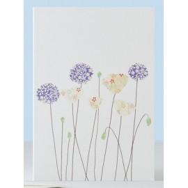 Dubbele kaart Poppies & Aliums