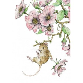 Mouse Rose