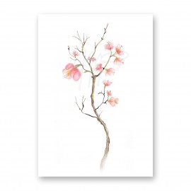 Moniek Peek Blossom