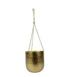 Hangpot Kody Goud H15
