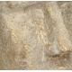 Bloempot Hoofd Goud H28cm