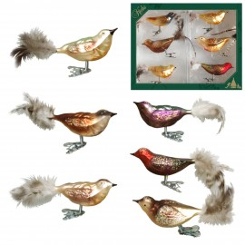 Set van 6 Bosvogels op Clip