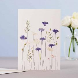 Dubbele kaart Cornflowers and Daisies