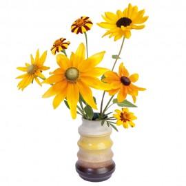 Flat Flowers Sunflower