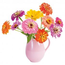 Flat Flowers Zinnia