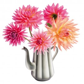 Flat Flowers Dahlia coffee pot