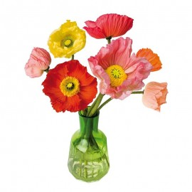 Flat Flowers Papavers