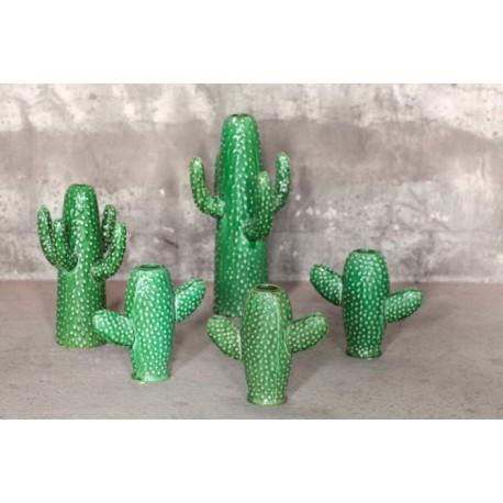 Cactus Vaas