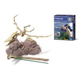 Skelet bouwpakket 'Pterosaurus'