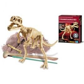 Skelet bouwpakket 'Tyrannosauris Rex'