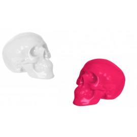 Spaarpot Skull Silly