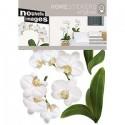 Muurstickers Witte orchidee